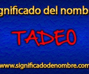 Significado de Tadeo