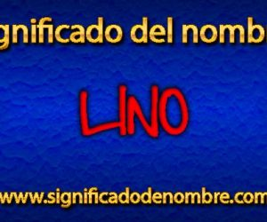 Significado de Lino
