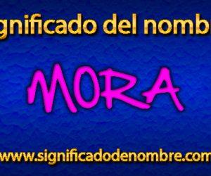 Significado de Mora