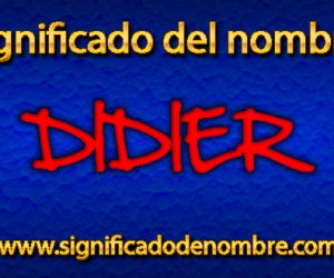 Significado de Didier