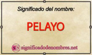 Significado de Pelayo